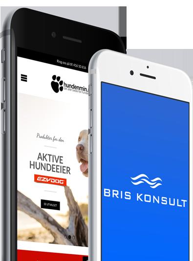 bris-mobile-mockup