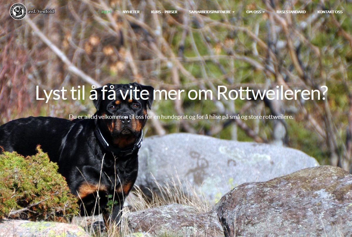 rottweiler-vestfold